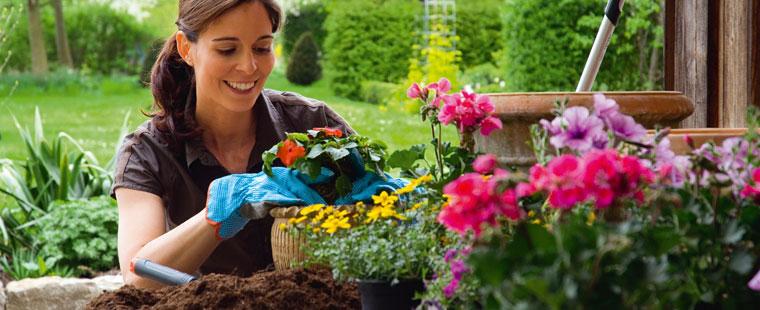 baharda bahçe bakımı